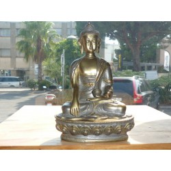 Buddha touched the earth